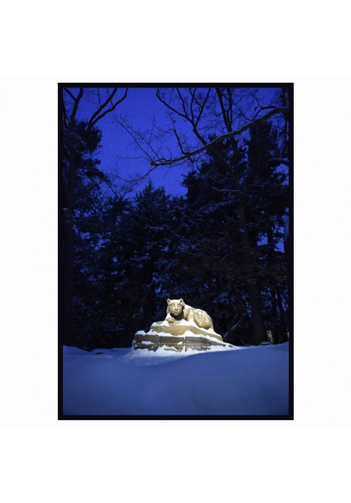 Nittany Lion Shrine Winter Night - Wood Sign