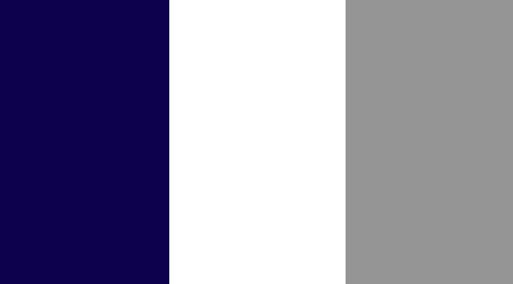 Navy/White/Gray